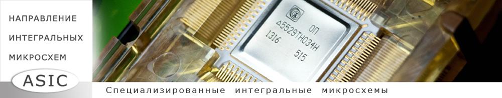 Asic Специализированные интегральные микросхемы